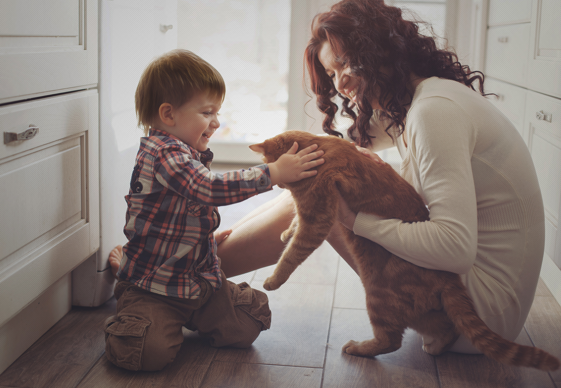 Mascotas Pet And Co